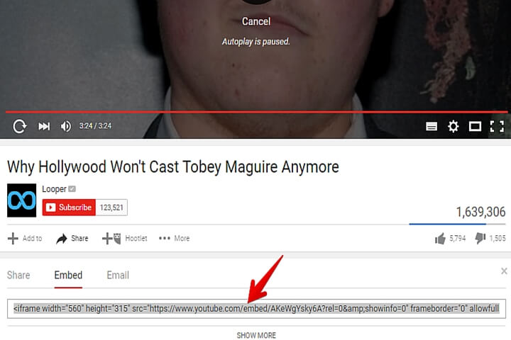 adding a youtube video to your website