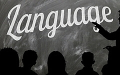 Can You Translate Languages?