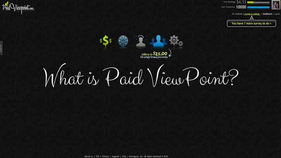 Paid ViewPoint Overview