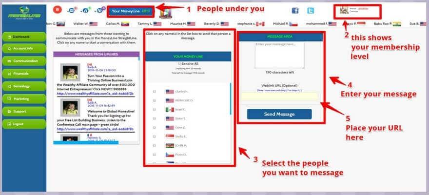 Global Moneyline Dashboard Screeenshot
